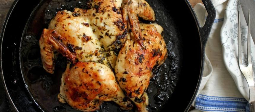 Braised Chicken with Tarragon Recipe