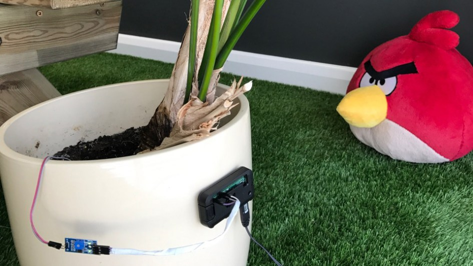 Raspberry Pi Zero Soil Moisture Sensor with Slack Notifications