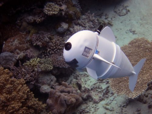 MIT CSAIL underwater fish SoFi using Raspberry Pi