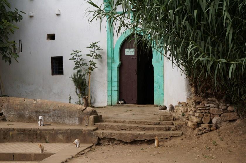 150307_rundreise_marokko_rabat_15