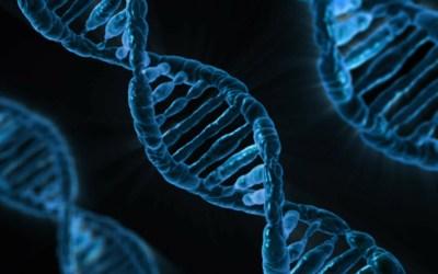 DNA a jej sila