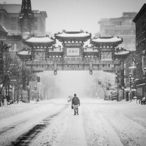 snow_bells_artwork_official_f