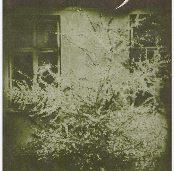 almanacho viršelis 1992