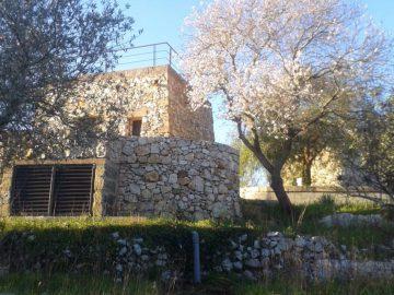Al Frantoio case vacanza in Salento