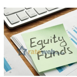 Allan Gray Equity Fund