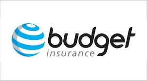 Budget Insurance Life Insurance Review 2021