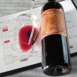 Rational Wine Review #7 – Feudo Arancio Nero D'Avola 2012