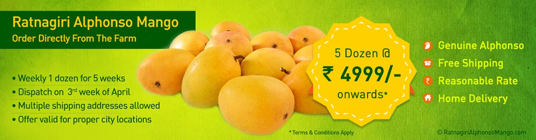 Alphonso Mangoes Supplier In India