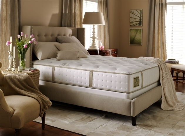 Mattress Firm Headboards Stearns Foster Duval Street Ultra Photos 97