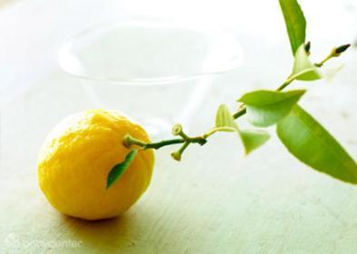 Ukuran janin minggu ke-14 sebesar buah jeruk lemon.