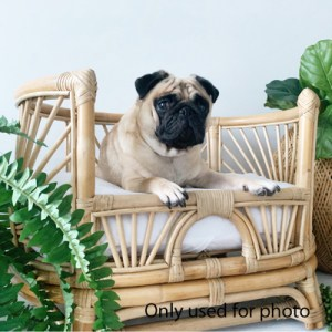 small rattan dog bed