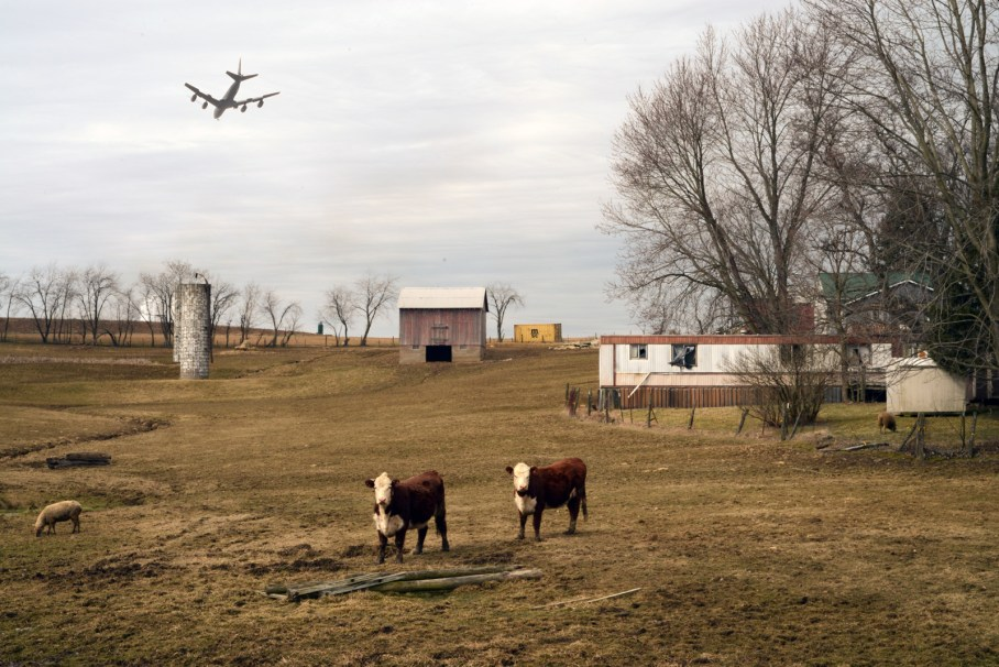 Photo from Elsewhere by B.A. Van Sise, two cows with jet flying overhead