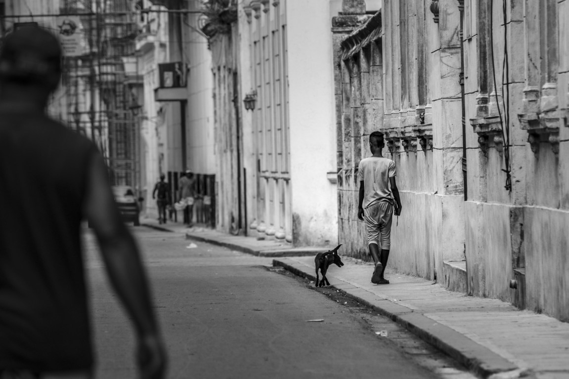 black and white photo of boy walking dog on a street