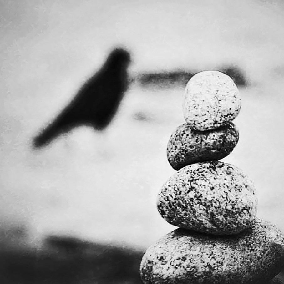 Black and white photograph of a cairn of smooth stones with a bird in the background