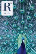 Rattle #54