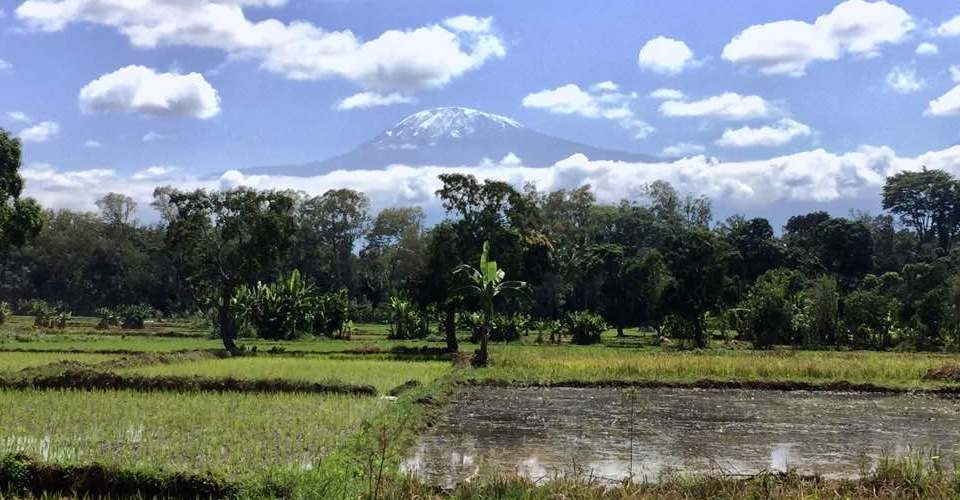 Mount Kilimanjaro view from Rau Eco Cultural Tourism
