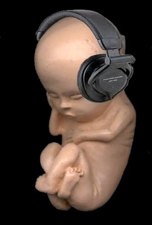 foetus_headphones_thing.jpg