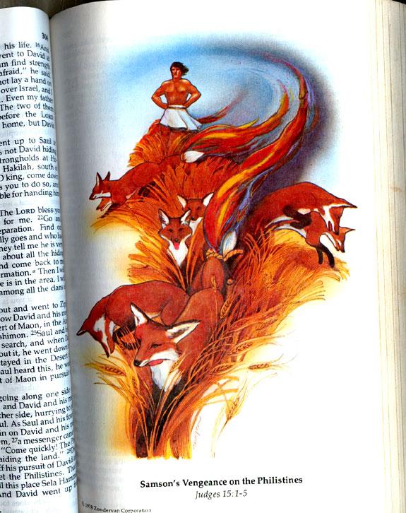 ¿El origen del logo de Firefox?