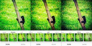 Aspecto final de una foto con tres de los mejores filtros de Instagram