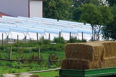 Woltow, Deutschland Solarthermisches Kraftwerk für Fischzuchtanlage