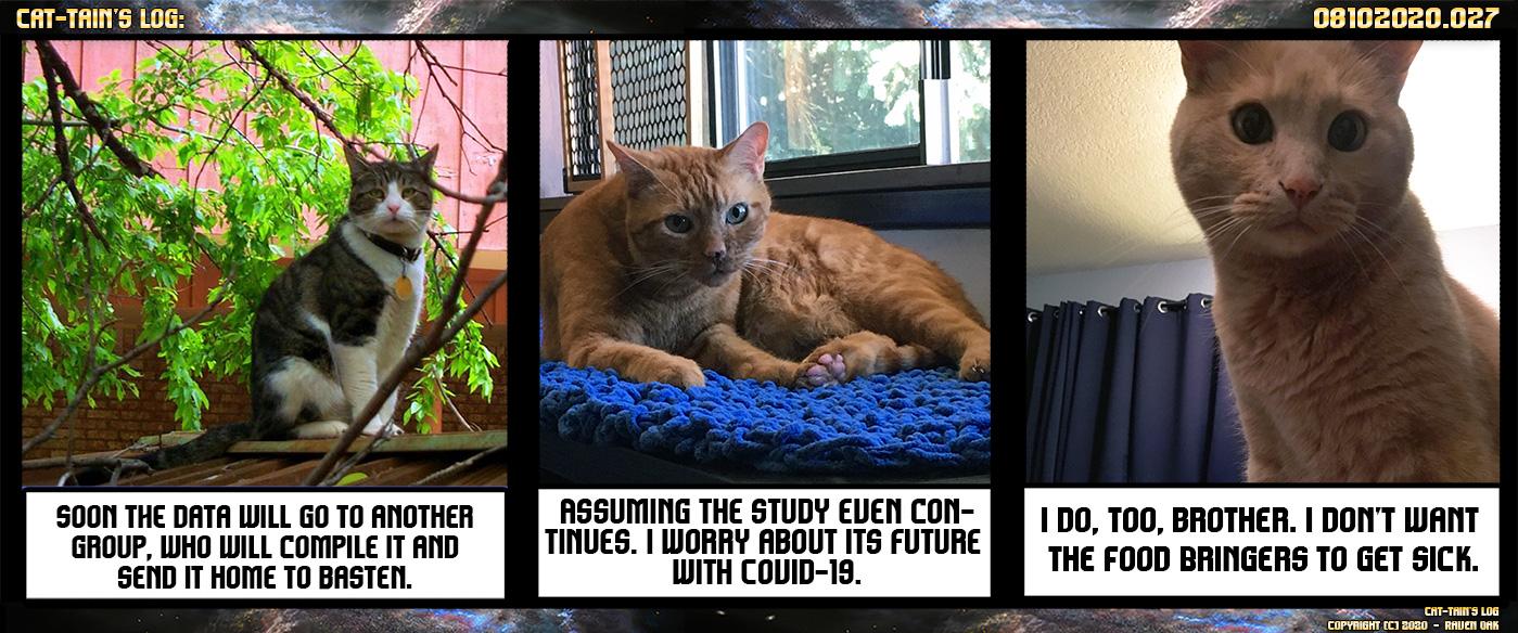 Cat-tain's Log: Episode 027