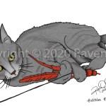 Bait by Raven Oak