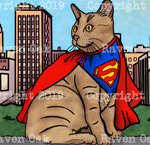 Superkitty by Raven Oak