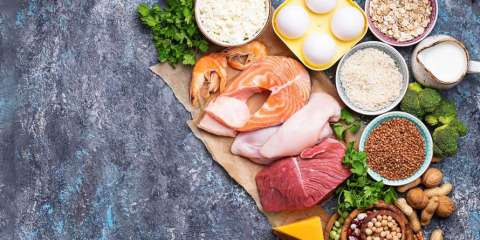 How Much Protein Do I Need? A variety of protein-rich foods to meet daily recommended protein intake