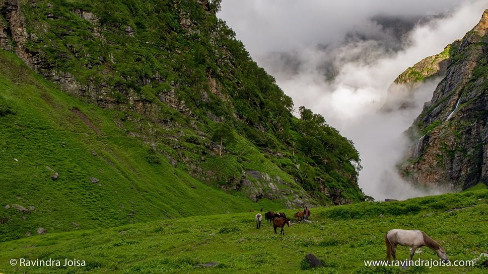 Jwara campsite - Tunnel View - Hampta Pass trek