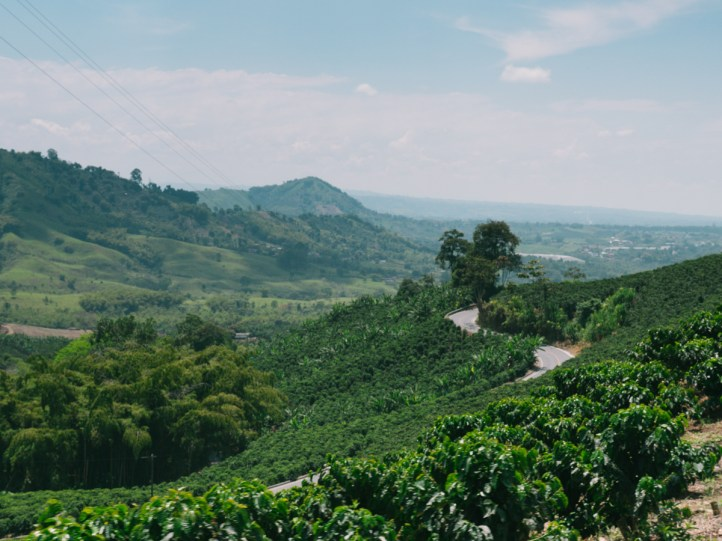 All The Places Series: CocoraVelo
