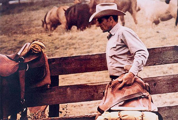 Cowboy #1