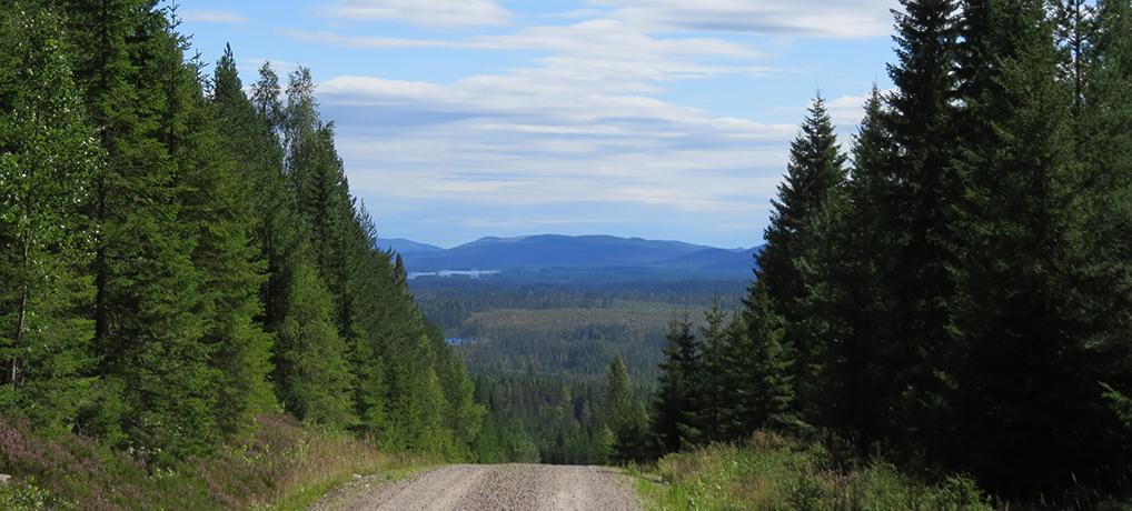 Noord Värmland rondrit