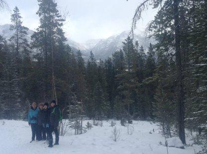 mountain retreat 10