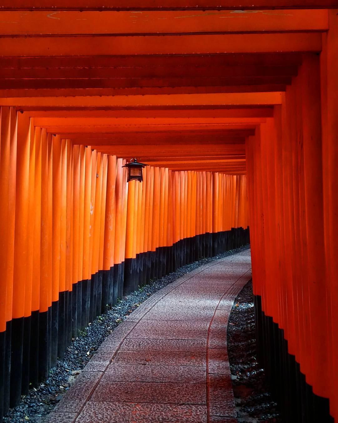 Japan -  Sonia Michaelsen Photography