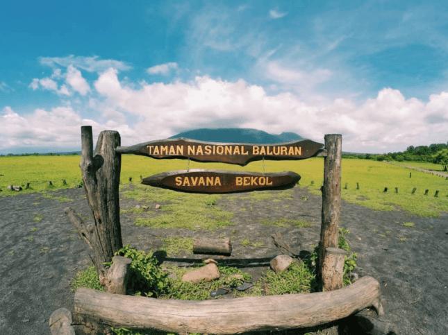 Wisata alam Taman Nasional Baluran