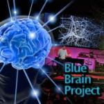 Bluebrainprojectimages (1)