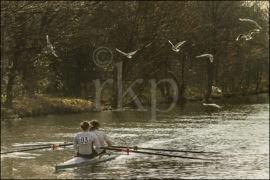 Trafford Rowing Club 001