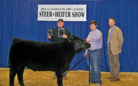 Steer Show 15
