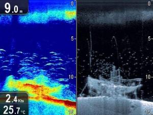 Raymarine CHIRP sonar en CHIRP DownVision splitscreen vergelijking