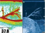 Raymarne fishfinder downvision normal sonar verschil beeld