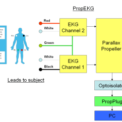 What Is Computer Explain With Block Diagram Chameleon Life Cycle Prop Ekg