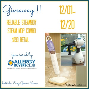 Blogger Opp: Reliable Steamboy Steam Mop Combo Giveaway Event