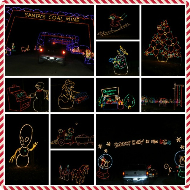 Prairie Lights Displays