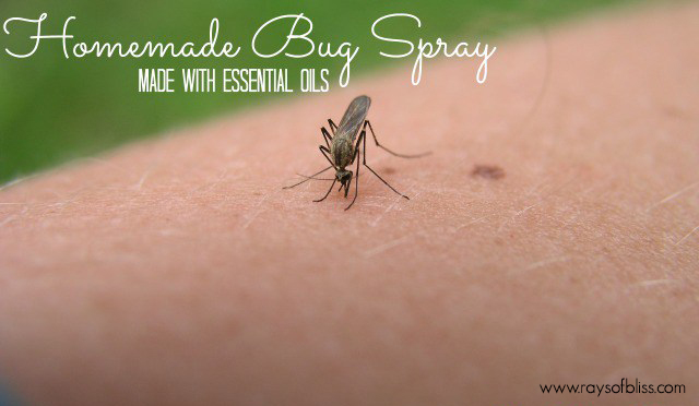 Essential Oils Homemade Bug Spray with Free Printable - Rays of Bliss