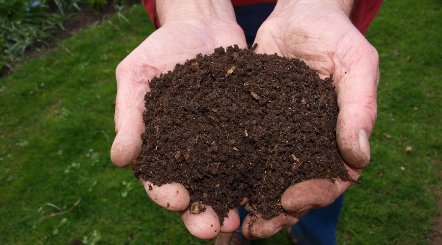 A man holds some compost in his hands with a green lawn in the background