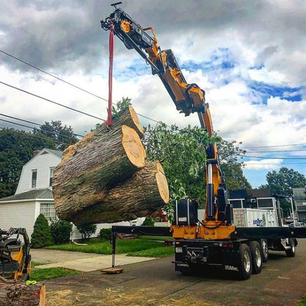 crane lifting large piece of wood