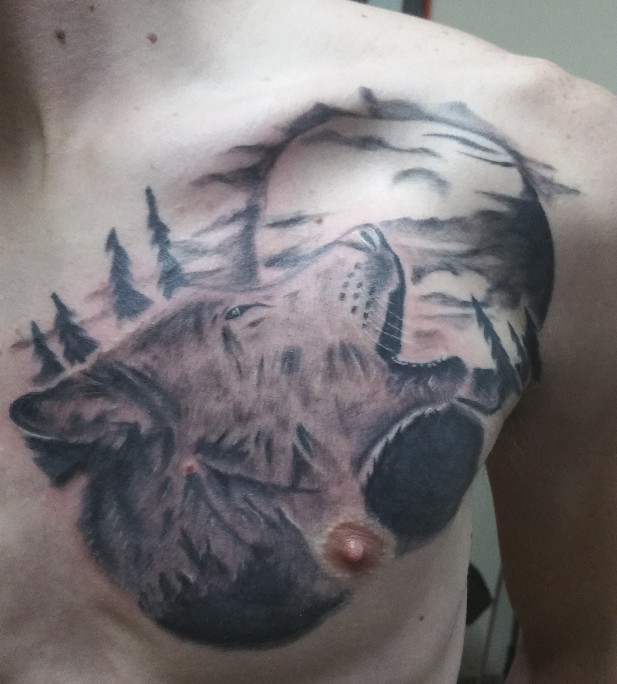 Three Wolf Moon Tattoo