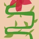 Blossom on Vine
