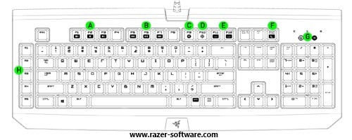 razer chroma device layout