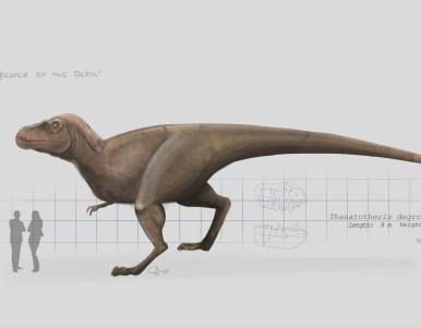 Thanatotheristes degrootorum, «El Segador de la muerte» Un nuevo tiranosaurideo.